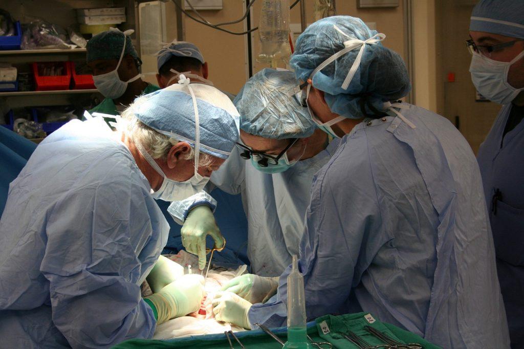 Donazione di organi e tessuti: il grande cuore dei polesani che salva la vita